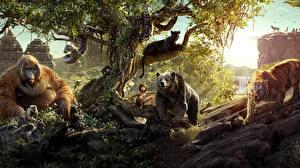 Обои Обезьяны Медведи Тигры Пантеры Змеи Мальчики The Jungle Book 2016 Фильмы фото