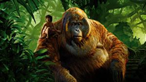 Обои Обезьяны Мальчики The Jungle Book 2016 Фильмы фото