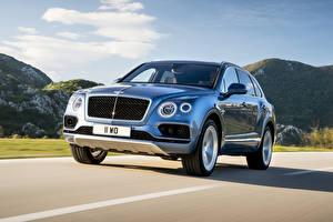 Обои Bentley Голубой Движение Металлик 2016 Bentayga Diesel Worldwide Автомобили картинки