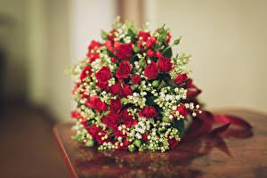 Обои Букеты Розы Цветы картинки