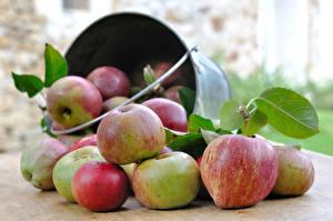 Обои Яблоки Еда картинки