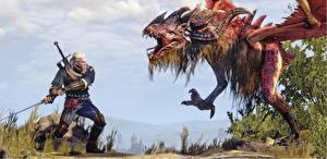 Обои The Witcher 3: Wild Hunt Битвы Монстры Воители Geralt vs Royal Wyvern Игры Фэнтези картинки