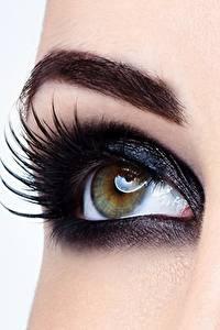 Картинки Глаза Крупным планом Ресница Макро Макияж Девушки