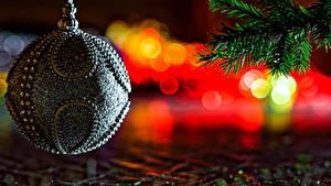 Фото Рождество Ветвь Шар Дизайн
