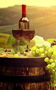 Фото Вино Виноград Бочка Поля Бутылка Бокалы