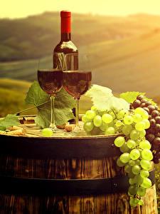 Фото Вино Виноград Бочка Поля Бутылка Бокалы Пища