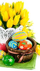 Фотографии Праздники Пасха Тюльпаны Белый фон Яйца цветок