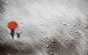 Фото Дождь Капель Силуэта Зонтик Стекло