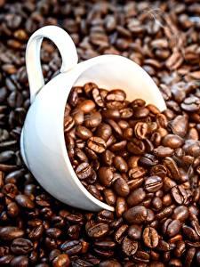 Обои для рабочего стола Кофе Зерно Чашке Пища