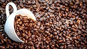 Картинки Кофе Зерно Чашка Продукты питания