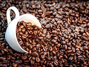 Картинки Кофе Зерно Чашке Пища