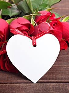 Обои для рабочего стола День святого Валентина Роза Доски Красных Сердце Цветы