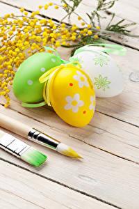 Фотография Праздники Пасха Мимозы Доски Яйца Три