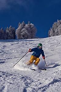 Фотография Лыжный спорт Зимние Мужчины Снег Спорт