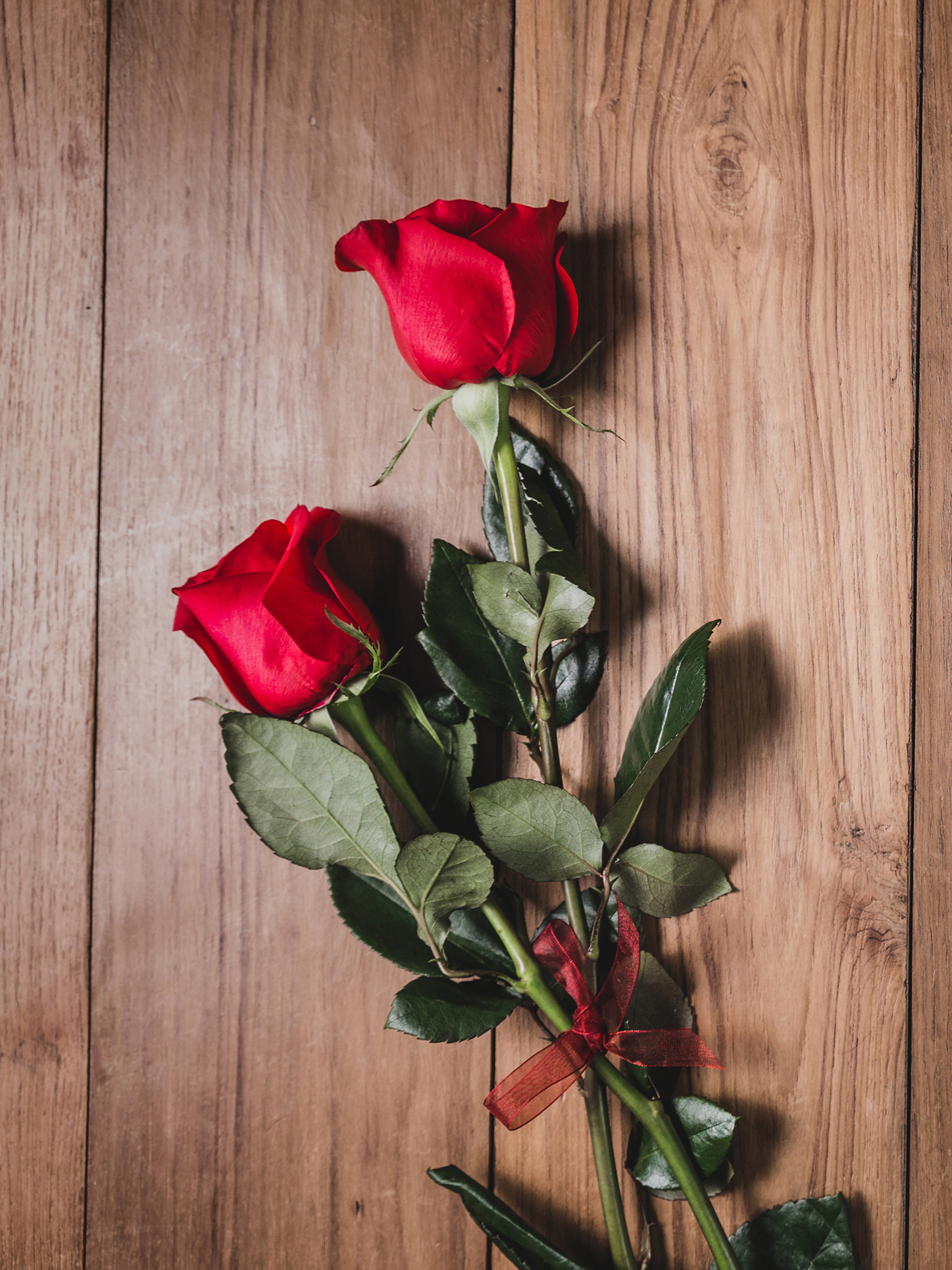 Roses_Wood_planks_Red_Two_530630_2048x27