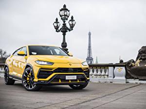 Фотография Lamborghini Желтый Металлик 2018 Urus Авто