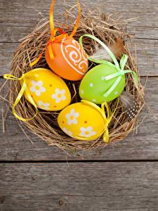 Картинки Праздники Пасха Доски Яйцо Гнезда