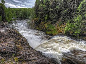 Обои Россия Леса Речка Волны Suna River Karelia Природа