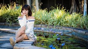 Картинки Азиатки Пруд Позирует Сидящие Шатенка Смотрит молодые женщины