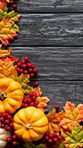 Картинки Тыква Осень Листва Клён Доски