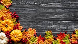 Картинки Тыква Осень Лист Клён Доски