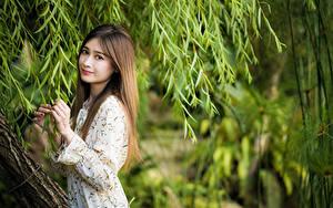 Фотографии Азиаты Ветки Платья Рука Шатенка Взгляд молодая женщина