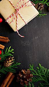Фотографии Новый год Подарок Шаблон поздравительной открытки Шишка