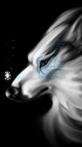 Обои Волшебные животные Волки Черный фон Фантастика