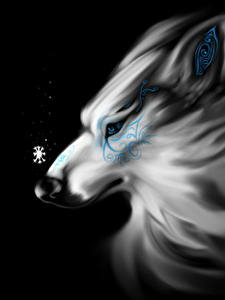 Обои Волшебные животные Волки На черном фоне Фантастика