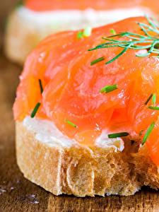 Фотография Бутерброды Рыба Хлеб Еда