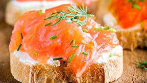 Фотография Бутерброды Рыба Хлеб