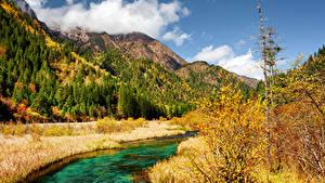 Картинка Цзючжайгоу парк Китай Парк Осень Гора Речка Пейзаж