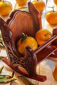 Фотографии Цитрусовые Мандарины Кресло Листья