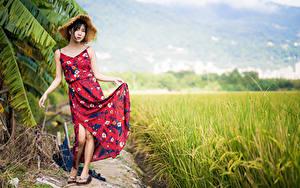 Фотографии Азиатка Поля Брюнетка Платья Шляпы Поза молодые женщины
