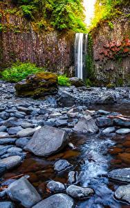 Обои для рабочего стола США Водопады Камень Утес Abiqua Falls Oregon Природа