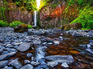 Фото Штаты Водопады Камень Утес Abiqua Falls Oregon