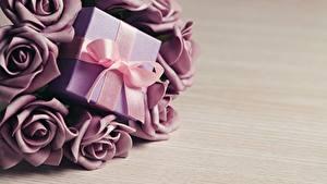 Фотография Розы Подарки Бантик Цветы