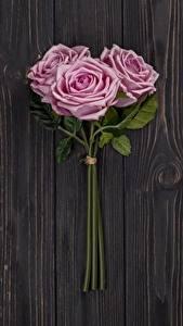 Картинка Розы Розовый Трое 3 Доски Цветы