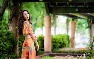 Картинки Азиатки Боке Рука Шатенки Смотрит девушка