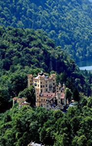 Фото Германия Замки Леса Hohenschwangau Castle Fussen Города