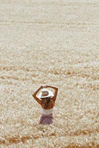 Фотографии Поля Пшеница Природа Девушки