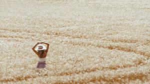 Фотографии Поля Пшеница Девушки