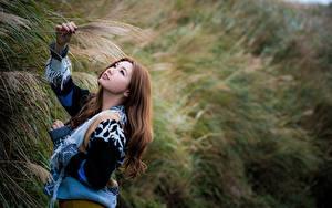 Фото Азиатки Боке Позирует Свитере Шатенки девушка