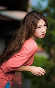 Фотографии Азиатки Боке Шатенки Миленькие девушка