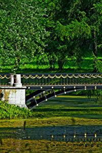 Фото Санкт-Петербург Россия Парки Мосты Пруд Pushkino Природа