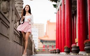 Картинка Азиатки Размытый фон Ноги Юбка Шатенка Красивая девушка