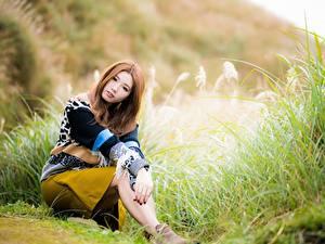 Фото Азиатка Размытый фон Позирует Сидя Взгляд Шатенки Девушки