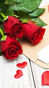Фото День святого Валентина Розы Доски Красный Трое 3 Сердечко Письмо Цветы