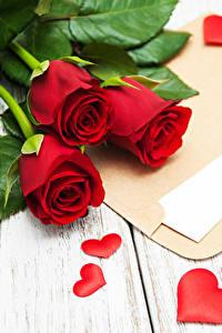 Фото День святого Валентина Роза Доски Красный Трое 3 Серце Письма цветок