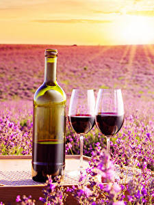 Картинки Рассветы и закаты Вино Лаванда Бутылка Бокалы Вдвоем Пища